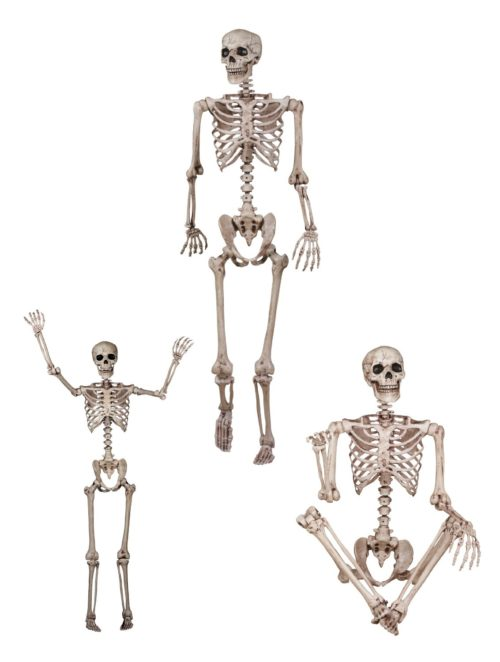 60-inch-skeleton-with-poseable-arms-and-legs-1