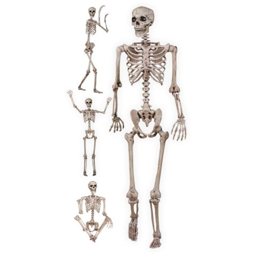 60-inch-skeleton-with-poseable-arms-and-legs-2